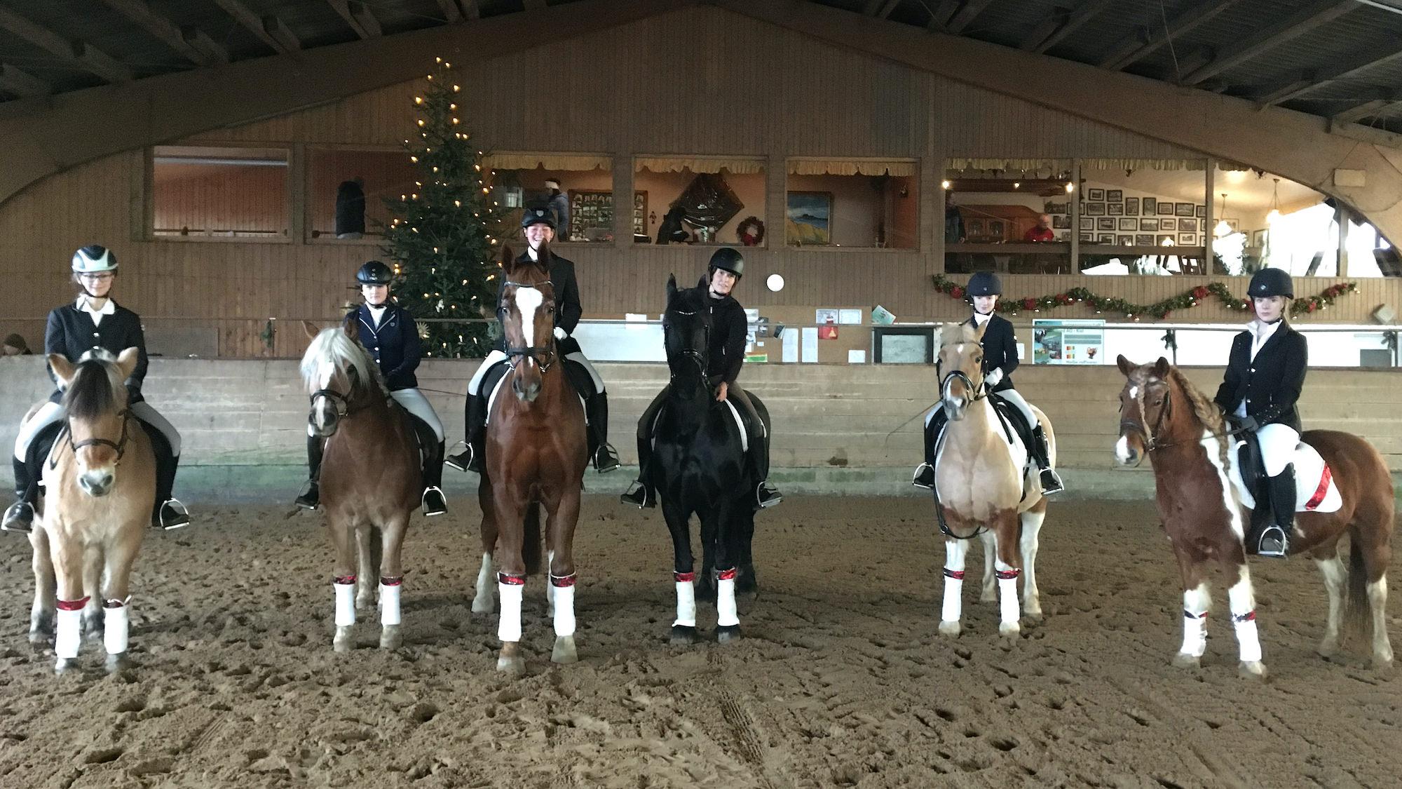 PferdeStephie Weihnachtsreiten 2019